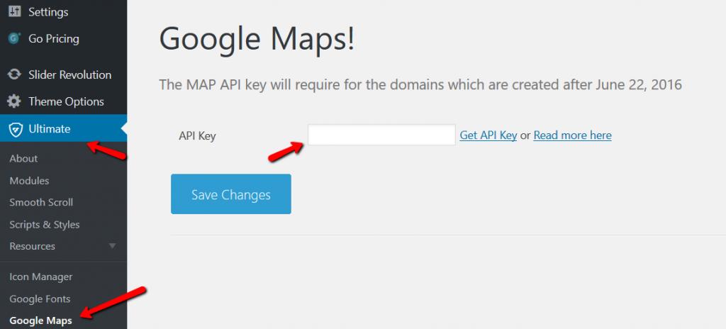 Fig. 8. Enter API Key.