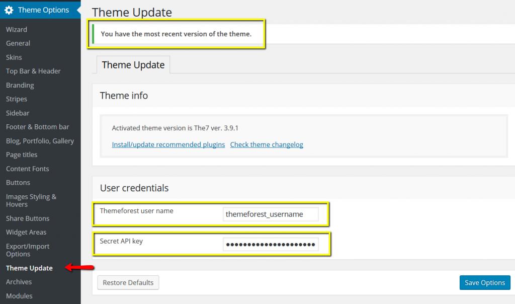 Fig. 2. Enter API Key to Theme Options